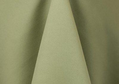 Light Olive 620