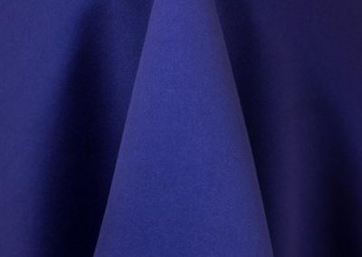 Purple 696