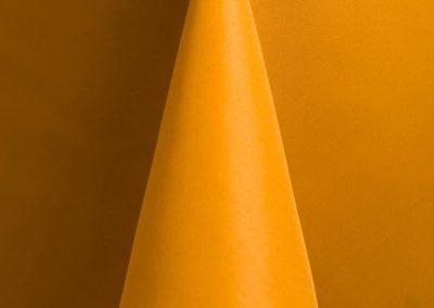 Sunflower W61